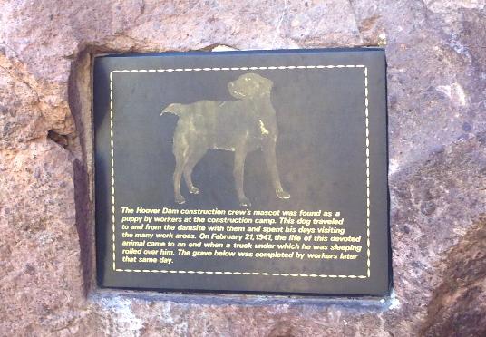 Este cachorro foi encontado aqui durante a construção e virou o mascote dos trabalhadores.